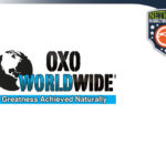 OXOWW Review – How Does OXO WorldWide MLM Work?
