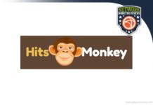 hits monkey