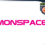 MONSPACE Review – Multinational Corp Mall & MLM Business Opportunity?